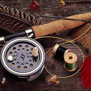 Охотничьи и рыболовные магазины Дигоры
